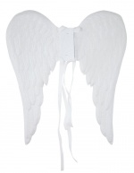 Angel rainbow wings