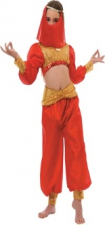 Arabian dancer kids costume