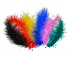 Feather 12-15 cm. 25 units bag