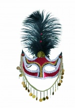 Venetian feather and trimmings mask